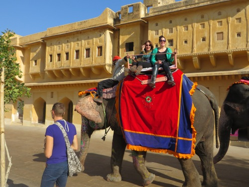 Jaipur, Our Elephant