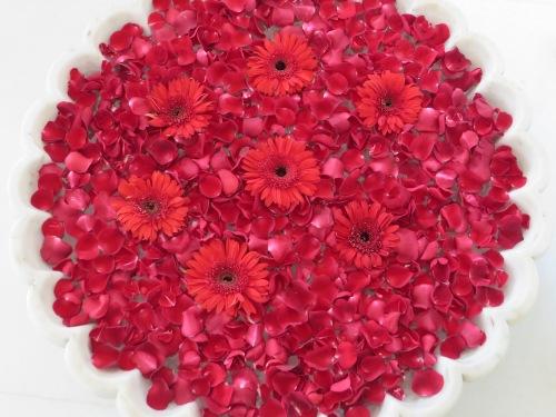 Jaipur Hotel Flowers
